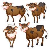 Vaca marrón — Vector de stock