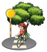 A street with a boy biking — Stock Vector