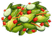 Salad — Stock Vector