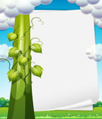 Banner with beanstalk — Stock Vector