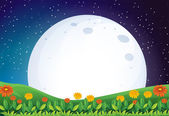 A bright full moon — Stock Vector