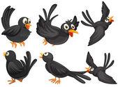 Pájaros negros — Vector de stock