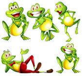Frogs — Stock Vector