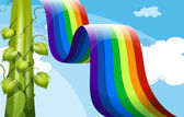 A rainbow and a tall vineplant — Vetorial Stock