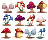 M	ushroom set — Vettoriale Stock
