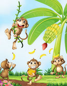 Playful monkeys near the banana plant — Stock Vector