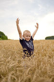 Boy in a wheat field. — 图库照片