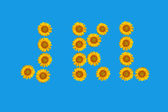 Floral alphabet made ​​from flowers of sunflower. — Stock Photo