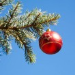 Christmas decoration — Stock Photo #13248740