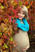 Autumn portrait a lovely young gray-eyed blond pregnant woman — Stock Photo