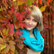 Autumn portrait a lovely young gray-eyed blond woman — Stock Photo #13690581