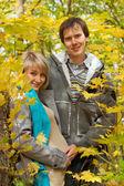 Láska krásná mladá těhotná pár v podzimním lese — Stock fotografie