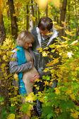 Hou van mooie jonge zwangere paar in de herfst bos — Stockfoto