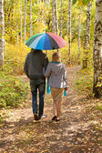 Happy pregnant woman and man walking in autumn forest — Stok fotoğraf