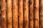 Fence made of logs — Stock Photo