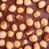Gorzkiej czekolady z orzechami — Zdjęcie stockowe