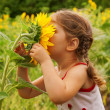 Child and sunflower — Stock Photo #18226835