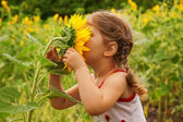 Child and sunflower — Stock Photo