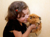The little girl kissing the guinea pig. — Stockfoto
