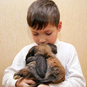 Boy hugging and kissing rabbit. — Stock Photo