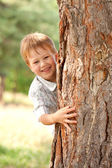 Little boy looking out from behind tree. — Stock Photo