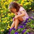 Little girl among the flowers — Stock Photo