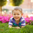 Little boy among the flowers — Stock Photo