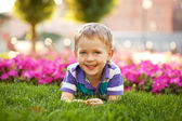 Little boy among the flowers — Stock Photo