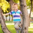 Little boy on the walk in Autumn Park. — Stock Photo