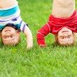 Happy children standing upside down on grass. — Stock Photo #33270755