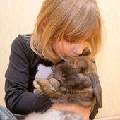 Het kleine meisje knuffelen en kussen konijn. — Stockfoto