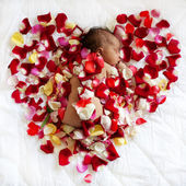 Black newborn baby sleeping in rose petals  — Stock Photo