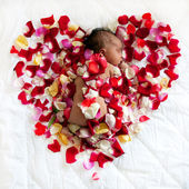Black newborn baby sleeping in rose — Stock Photo