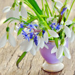 Beautiful bouquet snowdrops in a vase on woody background — Stock Photo