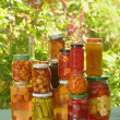 Autumn preserves — Stock Photo #22158605