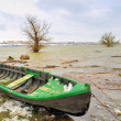 Green boat on danube river — Stock Photo