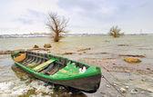 绿色小船在多瑙河河 — 图库照片