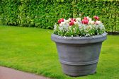 Mandje van lentebloemen in de tuin — Stockfoto