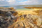 アイルランドからの美しい風光明媚な田園風景 — ストック写真