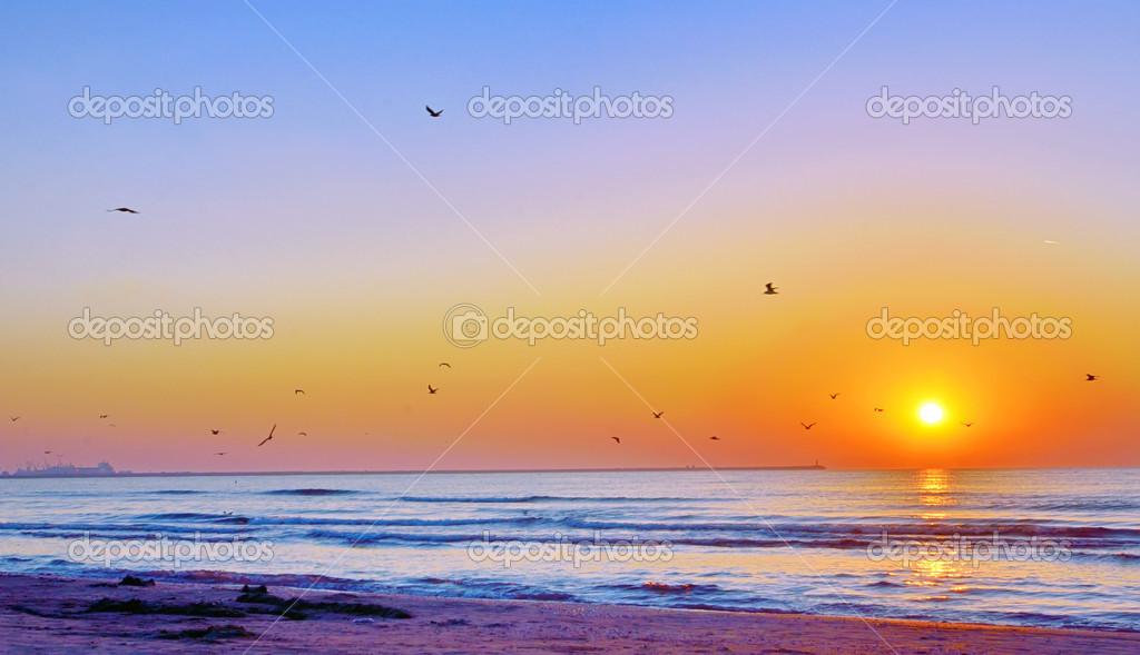 sunrise beach black singles Search sunrise beach houses for sale and other sunrise beach real estate find single family homes in sunrise beach, mo.