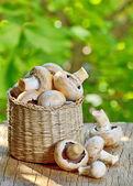 Mushrooms in straw basket — Stock Photo