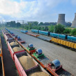 Cargo train platform with role steel — Stock Photo #37180027