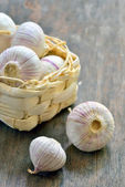 Garlic bulbs — Stockfoto