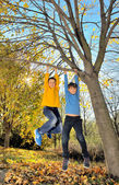 Boys hanging from branch of tree — Stock Photo