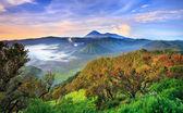 Bromo volcano at sunrise,Tengger Semeru National Park, East Java, Indonesia — Foto Stock