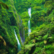 Madakaripura  Waterfall, East Java, Indonesia — Stock Photo