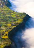 Village near cliff at Bromo Volcano in Tengger Semeru, Java, Indo — Stock Photo