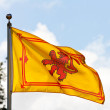 Scottish flag the Rampant Lion - Stock Photo