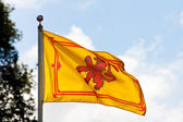 Scottish flag the Rampant Lion — Stock Photo
