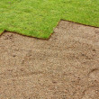 Stock Photo: Partially layed Turf